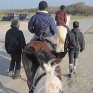 Balade à cheval entre personnes à mobilité réduite