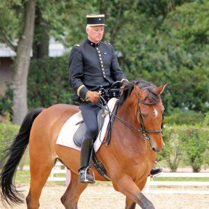 Niepełnosprawni na koniu