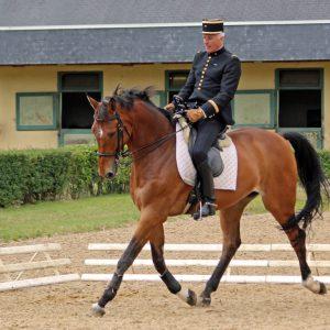 Wyłączony jeździec z wyposażeniem Mouvly