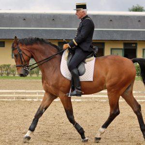 Cavalier ręczny z wyposażeniem Mouvly
