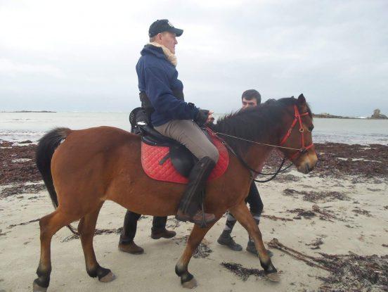 Matériel handicapé pour chevaux