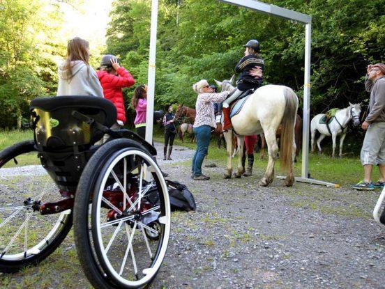 Equipement de mouvlt pour chevaux